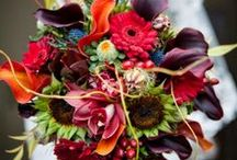 wedding flowers / by Leah Holland