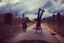 My Instagram 2013-14