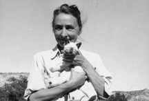 Artists and animals / Artists with animals - everyone likes to be pictured with their favourite pet don't they?
