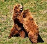 """Märchen Artwork / Unser Name 3Bears kommt von dem britischen Märchen """"Goldilocks and the Three Bears"""". Hier inspirieren wir euch mit zauberhafter Märchen Art!"""