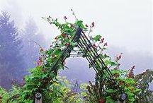 Garden and Farm / by Stasha Switzer