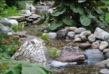 Streams / Streams add the sight and sound of running water in the landscape. They also help to aerate pond water and keep it clean. Learn more about ecosystem ponds and streams at www.aquascapeinc.com