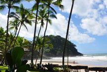 Brazilian Beaches | Swimsuits & Bikinis / It's always summertime in Brazil. Explore our beaches, bikinis and beautiful women!