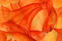 C O L O R M A G I C orange / ORANGE color therapy inspiration. NAVEL CHAKRA