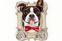 Tiny dog prints in frames