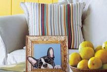 Picture Perfect Bostons / Adorable Boston Terriers printed on premium quality artists canvas and stretched on wooden stretcher bars. All ready to hang or display! Get a 20% discount on the whole store! Just put this url in your browser and join my mailing list: http://eepurl.com/b5mvPr