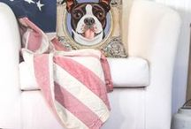 """Perfect Boston Pillows / Adorable Boston Terriers in frames are now pillow covers. They measure 17"""" x 17"""" Price: $30.00 Come visit for more info! Get a 20% discount on the whole store! Just put this url in your browser and join my mailing list: http://eepurl.com/b5mvPr"""