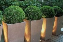 Garden Design / by Tracy Antol