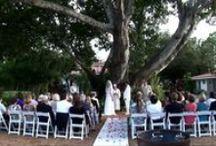 Wedding Video Highlights / Wedding Day Highlights Videos