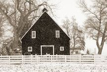 My Someday Farmhouse / by Stephanie A. Meyer | Fresh Tart