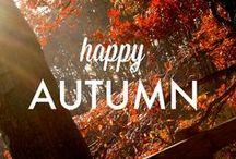 autumn / by Haley Maddox