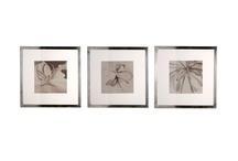Interior objects: decor / by Vera Voit
