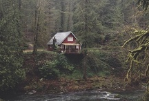 a place to call home / by Justine Rose