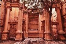 A dream about Palmira