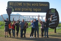 Our Tours / Our small group guided Wine Tours provide an intimate, yet social and lighthearted way to see and taste the best that Napa Valley and Sonoma Valley have to offer.  / by Platypus Tours