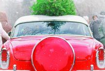 Christmas / by Amy Popham