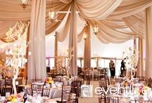 Event Lighting & Draping