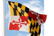 Maryland Pride / by Laurel White