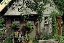 Groovy Garden  / by Jennifer Tucker