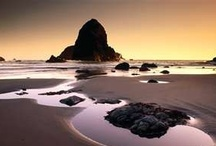 Oregon Coast / by Laurel White