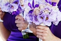 Voula & Dan's Wedding! / Purple and Blue Greek Summer Wedding Inspiration - for one of the best friends anyone could ask for! So happy for my incredibly sweet friend Voula and her awesome hubby Dan :-) / by Katie Gonano