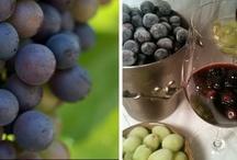Wine Club Ideas & Recipes / by Katie Gonano