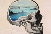 skulls, skulls, skulls / by Lili Higa
