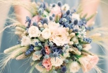 French Blue Wedding Palette Ideas / by Lori Paladino