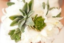 Olive Green Wedding Colour
