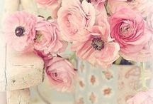 Shabby Chic / by By Invitation Only Blog