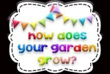 How Does Your Garden Grow? / First grade plants unit