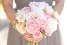 Blush Pink and Dove Grey Wedding