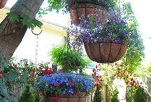 Backyard ideas / by Linda Barton