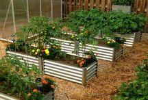 Yard & Garden