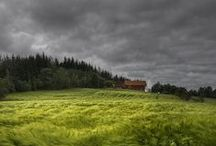 Nature/Landscape Photography / Nature and Landscape Photography