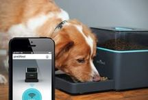 Pet Products / News & reviews of pet products