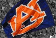 War Eagle Forever!!!!! / by Alana Hay