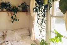 Room Inspiration / by Kirsty Lesperance