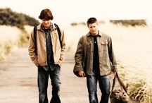 """Free Will - Supernatural / """"One ex-blood junkie, one dropout with 6 bucks to his name, and Mr. Comatose over there. Awesome."""" - Dean Winchester"""