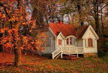 Dream House / by Carla Chandler