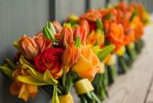 Orange / Everything Orange.. from Orange Themed to all colours of Orange !  Bright,  Bold and Cheerful !