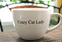 Crazy Cat Lady / by Amber Joi