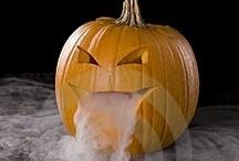 Halloween Stuff / by Christine Hughes