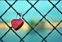 My pictures / http://abirdonwire.blogspot.com.es