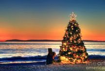 Christmas | at the Beach