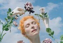 floral / by lianggono susanto