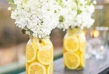 ◕Plants / flowers, vases, candles, decoration, events, plants, indoors plants, tropical plants, nature, pots