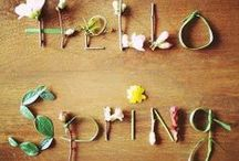 Spring / St. Patrick's Day, Easter, and Passover / by Melissa G. Shepherd