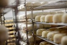 Cheese: Cowgirl Creamery's Finest