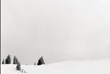 Christmas & Winter / by Samantha Schuermann